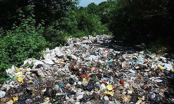 مرور نظریه های مطرح در حوزه تضاد و تخاصم بشر با محیط زیست ، آشنایی با هوش محیط زیستی