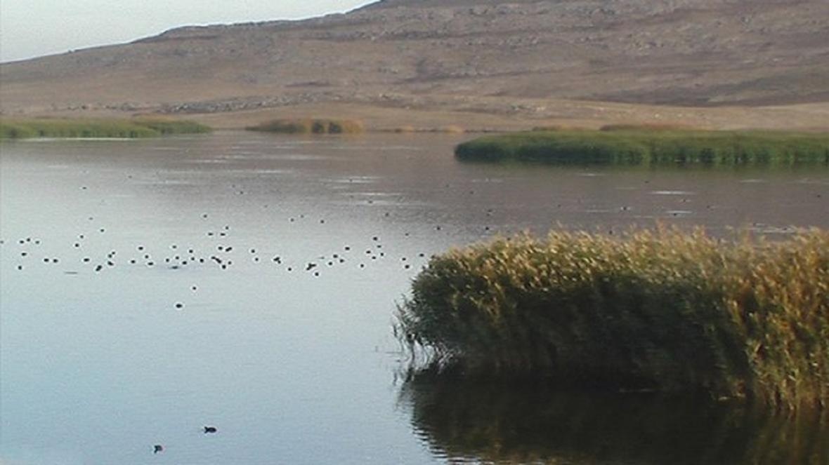 آخرین شرایط تالاب های کشور، زاینده رود، رودخانه دائمی که در فصل تابستان خشک می شود