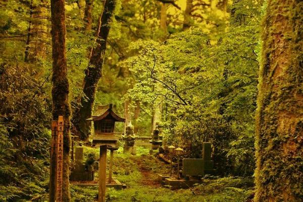 زیباترین مناظر ژاپن که غیر قابل تصورند!