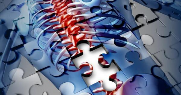 ترمیم اعصاب پس از آسیب نخاعی با روشی نوین