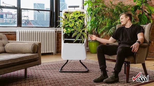 باغچه هوشمندی که هوا را تصفیه می نماید
