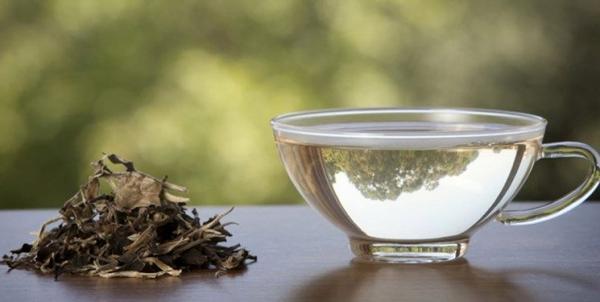چه کسانی باید نوشیدن چای سبز را متوقف کنند ؟